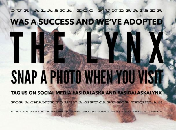 We've adopted the Lynx!